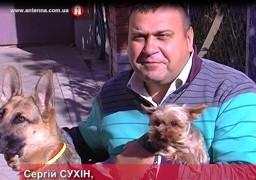 Собаки допоможуть кандидату впорядкувати місто