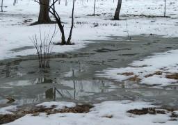 Великий сніг перетворився на велику воду