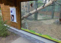 У черкаському зоопарку поповнення
