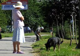 У Черкасах триває молоде бабине літо