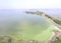 Вкрадена ріка: Кому в Черкасах належить берег Дніпра?