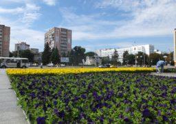 На Соборній площі квітами виклали прапор України