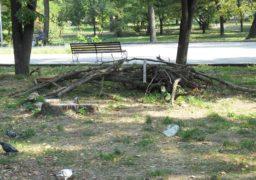 «Соборний» парк заполонили  хащі та сміття