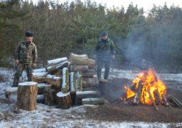 Черкаські лісівники показали, де живуть новорічні ялинки