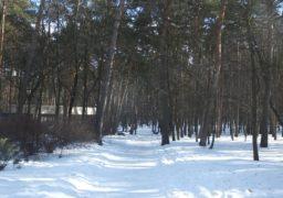 Черкаські парки в очікуванні весни