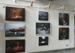 У Черкаському краєзнавчому музеї триває виставка сучасного мистецтва