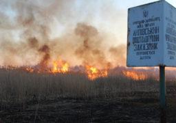 У Липівському заказнику знов пожежі. Гасити золотонісцям допомагають черкаські пожежні