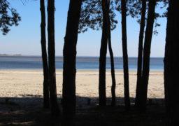 В мікрорайоні Дахнівка продовжують забудовувати берег. Бездіяльність держорганів вражає