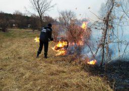 На Черкащині масово горить трава
