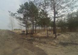 В районі дахнівської дамби активісти виявили незаконну забудову берега Дніпра