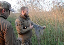 У Черкасах створено оперативний штаб для боротьби з бракон'єрами
