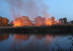 На Черкащині найвищий ступінь пожежної небезпеки. В Дахнівці горів очерет в протоці між селом та дамбою