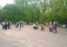 У парку Хіміків відбулась масштабна виставка собак