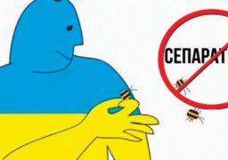 На Черкащині СБУ затримали пропагандиста «русского мира»