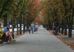 Передчасна осінь: на бульварі Шевченка пожовкли каштани