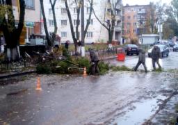 У Черкасах біля Третьої міської лікарні проводять обрізку дерев