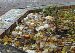 У Черкасах сквер по вул. Іллєнка перетворюється на смітник