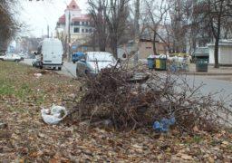 У Черкасах вздовж вул. Гоголя не прибирають сміття