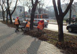 Комунальники прибирають опале листя на бульварі Шевченка