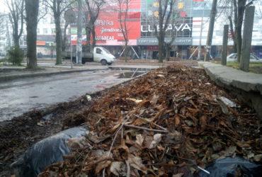 Навпроти ТЦ «Любава» купу з опалого листя містяни перетворили на стихійне сміттєзвалище