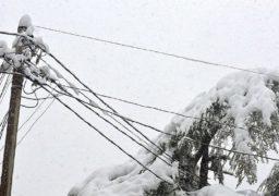 Черкаські енергетики продовжують обстеження високовольтної лінії біля водоочисної станції