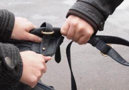 У Черкасах поліцейські охорони «гарячим слідом» затримали грабіжника