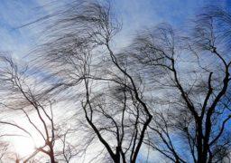 Штормове попередження: 30 січня очікуються пориви вітру 15-20 м/с