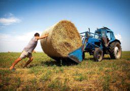 «Ми своїми руками знищуємо фермерів», – депутат Черкаської облради