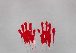 За підготовку вбивства матері засуджено горе-дочку до 2 років позбавлення волі з конфіскацією майна