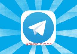 """Антена"" створила публічний канал у Telegram – @AntennaTVChannel"