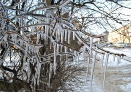 З 15 лютого на Черкащині очікується чергова порція тепла та опадів