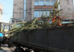 Черкаські комунальники вивозять зі смітників новорічні ялинки