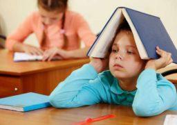 Директори шкіл самостійно прийматимуть рішення щодо призупинення навчально-виховного процесу