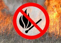 Черкащан закликають не палити суху траву