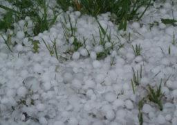 У вихідні на Черкащині дощова та помірно тепла погода