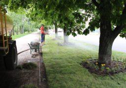 У Черкасах на вулиці Грушевського стелять газонне покриття