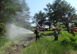 На Черкащині рятувальники і лісівники вчилися гасити пожежу
