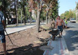 На бульварі Шевченка засіватимуть новий газон