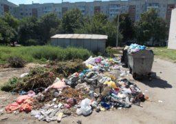 Контейнерні майданчики в Черкасах перетворюються на сміттєзвалища