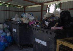 Через сміття санітарний стан у Черкасах погіршується