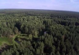 Пожежі у черкаських лісах вистежують із висоти пташиного польоту