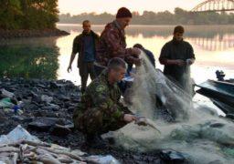 Черкаські браконьєри виловлюють червонокнижну рибу