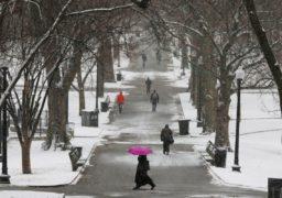 Починаючи від 15 листопада очікуються нічні морози до -8º, а після 19-го трохи потеплішає