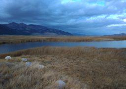 Welcome to Nevada: життя посеред високої пустелі