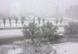 Метеостанція Золотоноша вранці 13 грудня зареєструвала налипання мокрого снігу діаметром 38 мм