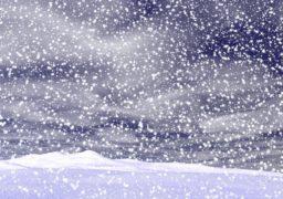 Вночі 27 січня знову сніжитиме. Приріст снігового покриву – 8-12 см