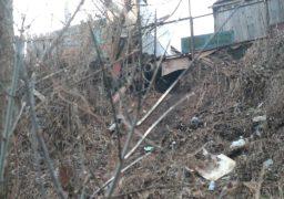 Власники домоволодінь на мальовничих схилах Дніпра зливають каналізацію прямо на вулицю