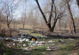 Біля одного з черкаських пляжів журналісти помітили справжній смітник