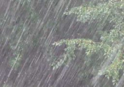 У червні теплі дні чергуватимуться з прохолодними, спостерігатимуться грози, шквали, град, зливи, можливі смерчі