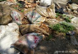 Черкащани перетворили узбіччя вулиці Героїв Холодного Яру (колишня Першотравнева) на суцільний смітник